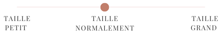 2-taille-normalement.png